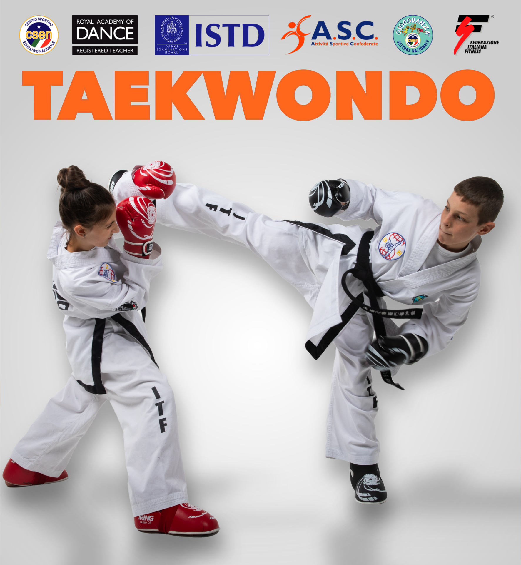 Corsi di Taekwondo a School of Art® Verona